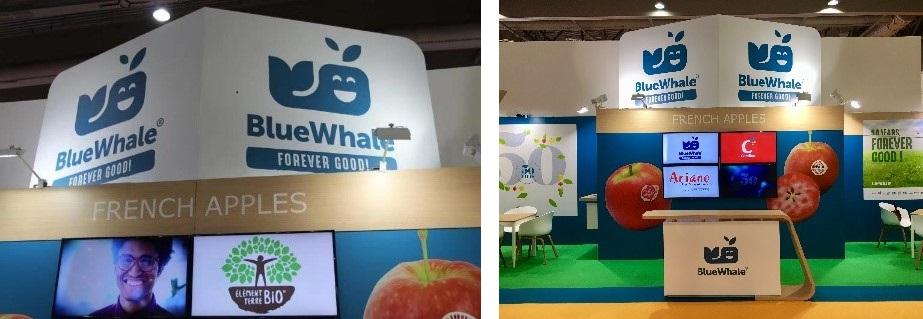 在2019年亚洲国际果蔬展览会上,蓝鲸正在展示他们的法国苹果